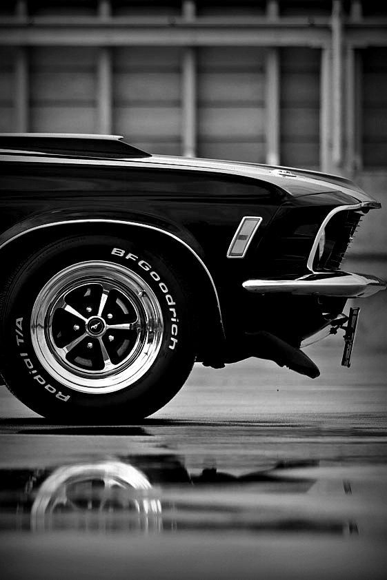 "gentlecar: ""Ford Mustang Boss 302 """
