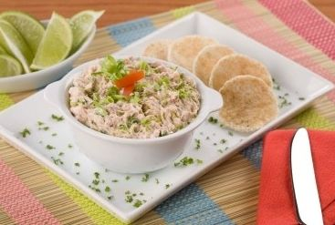 Cheesy salmon dip recipe....or use: Salmon Vegetable Dip  Ingredients:   2 cups Salmon   1 pkge Cream Cheese, softened    1 lb Sour Cream    1 package Knorr Vegetable Soup Mix    3 Green Onions, chopped  Directions:  Flake salmon and combine with remaining ingredients. Refrigerate several hours before serving.