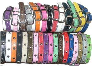 cat leather collars -your choice of colors and studs