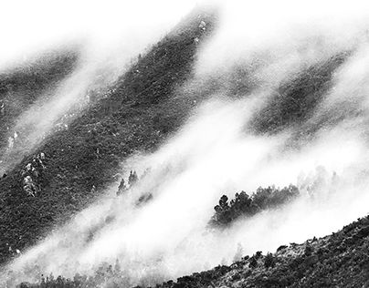 """Check out new work on my @Behance portfolio: """"Black and White Landscape Photography (High Key)"""" http://be.net/gallery/44637665/Black-and-White-Landscape-Photography-(High-Key)"""