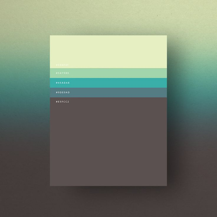 Minimal web color palettes/combination with hex code - 7