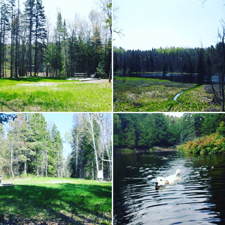 Enjoy the peace & quiet on 12.62 acres. 🛶 Spend your summers lazing in Deer River with access to Labrash Lake & the Magnetawan River. 🌲 Natural setting with 333ft of shoreline. Driveway is in & cleared to build. 🔨 A small 12x12 deck platform is waiting for you to sit & relax. Affordable escape! 🏕