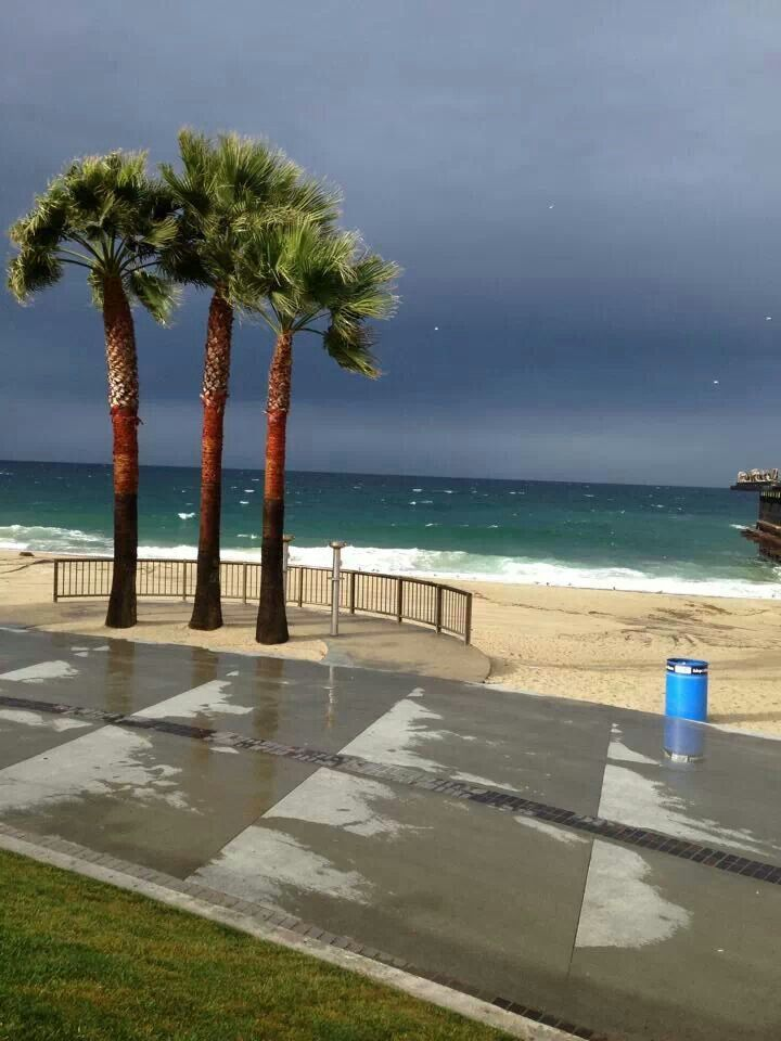 157 Best Images About Shade Hotel Redondo Beach On