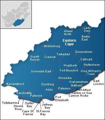 easterncapescubadiving.co.za