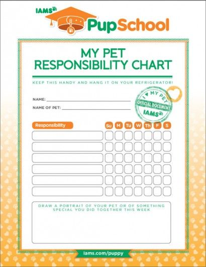 Pet Responsibility Chart | Barking, Pets and Parents