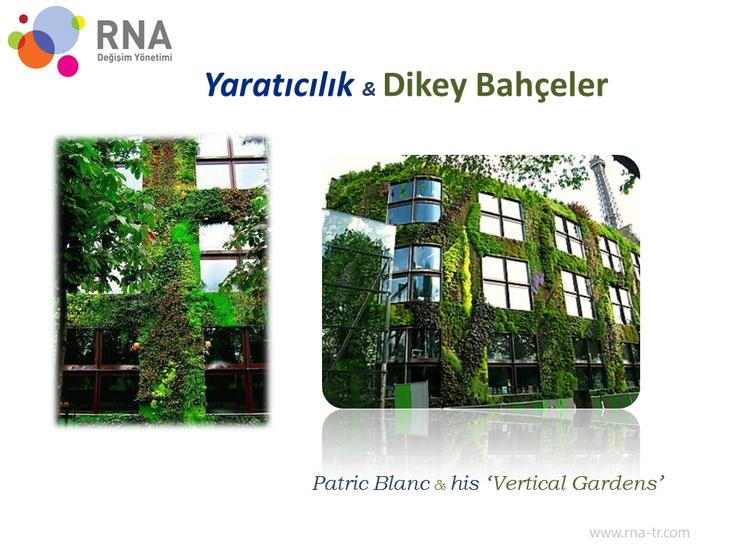 Yaratıcılık & Dikey Bahçeler & Patric Blanc...