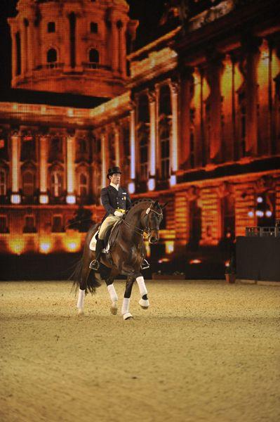 Wundervolle Kulisse, wundervolle Hengste - eine Mischung, die bei der Nacht der Hengste Freude macht! © Equitana #stallions #hengste #equitana