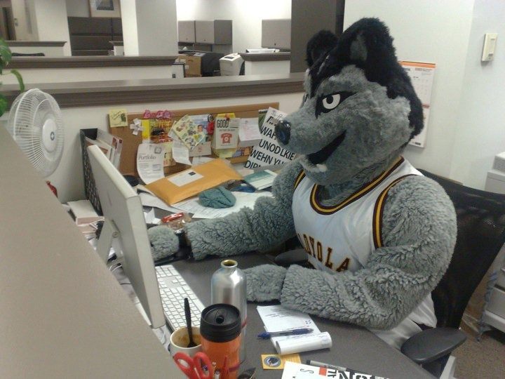 I did sport the LU Wolf costume a few times during my time at Loyola Chicago.