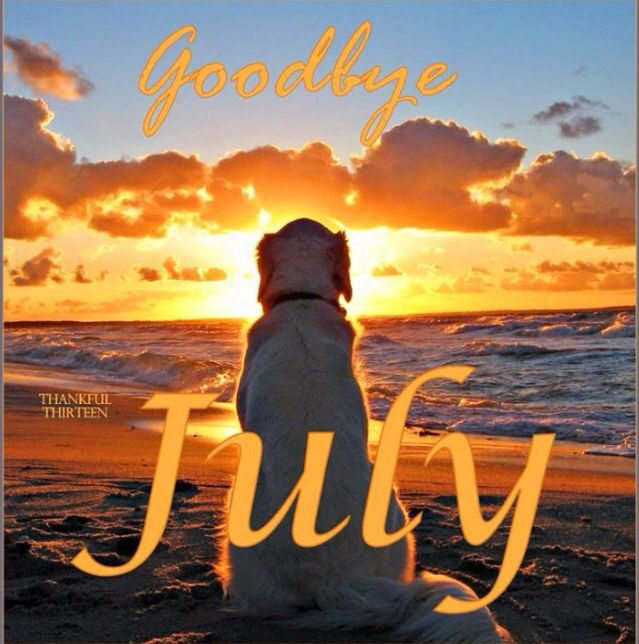 Goodbye, July...you Have Given Us Some Great Memories!