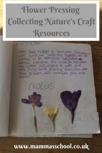 Flower Pressing, flower press, how to press flowers, make a flower press, pressed flower crafts www.mammasschool.co.uk