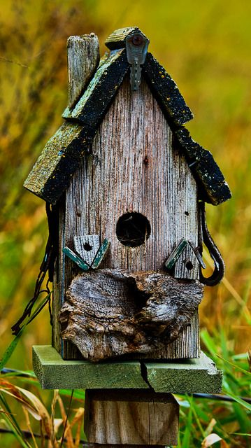 bird feeders as well as birdhouses bird house birds bird nest rh pinterest com