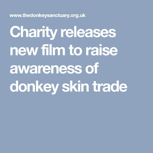 Charity releases new film to raise awareness of donkey skin trade