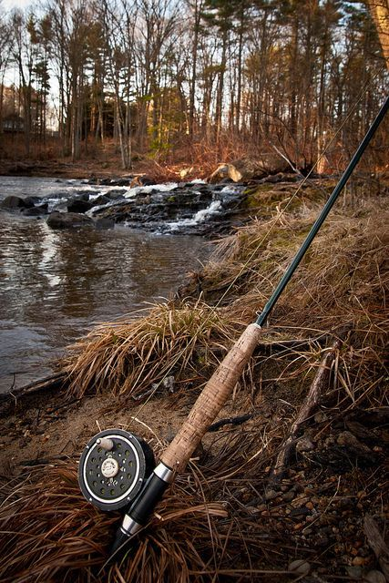 252 best bow fishing hunting images on pinterest for Bow fishing rod