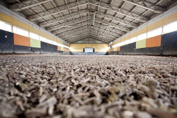 Una #arena coperta per lavorare i #cavalli tutti i giorni. Il luogo dove preparare il nuovo #spettacolo #SAGA IV