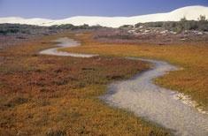 De Mond Nature Reserve - CapeNature