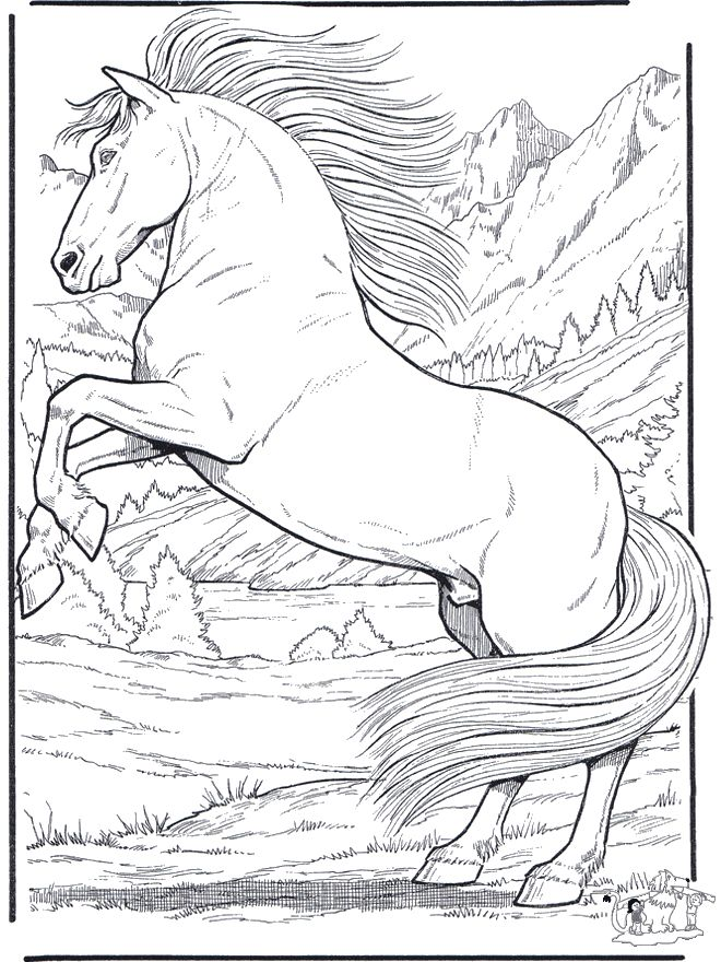 realistic horse coloring pages funnycoloringcom animals coloring pages horses horse