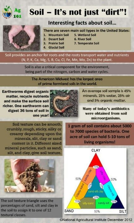 1000 images about forestry science on pinterest soil for All about soil facts