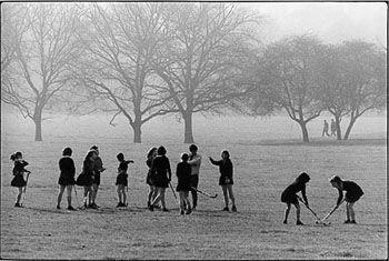Profile, Regent's park 1976 by Herbie YAMAGUCHI