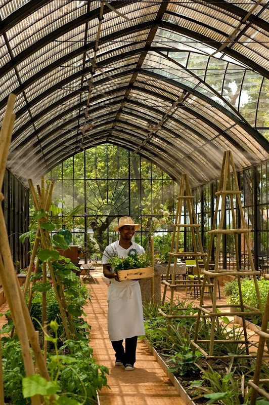 The Green House at Babylonstoren has plenty of organic, fresh produce growing. Well worth visiting when in Cape Town.