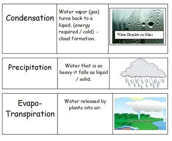 Here's a set of 75 cards with science terms, images and definitions.: 75 Cards