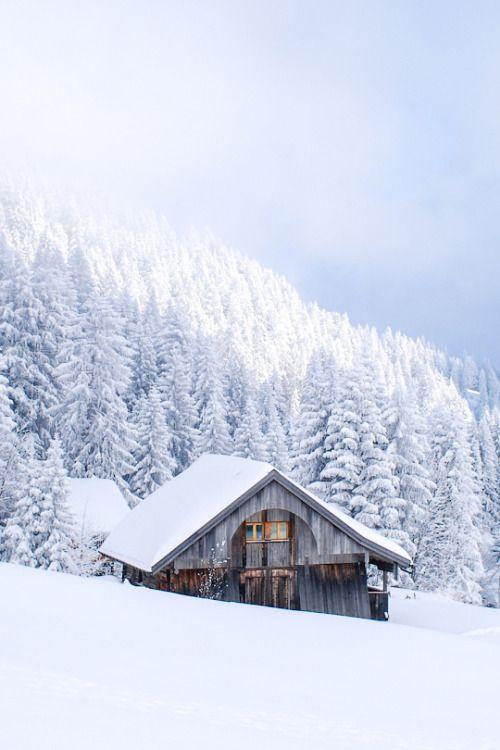 "joyeuxno-el: ""A Merry Little Christmas Blog ☕️🎄🎁"""