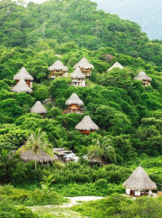 Sierra Nevada de Santa Marta, Colombia. Staying here this month!!!