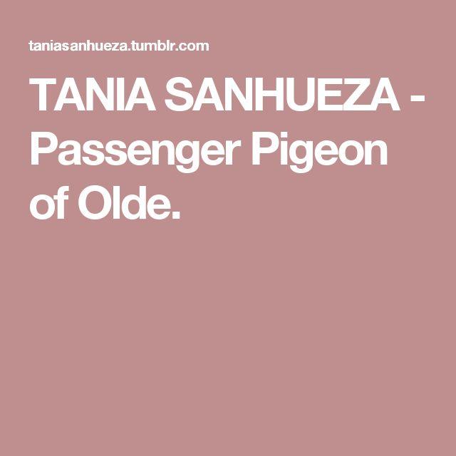 TANIA SANHUEZA - Passenger Pigeon of Olde.