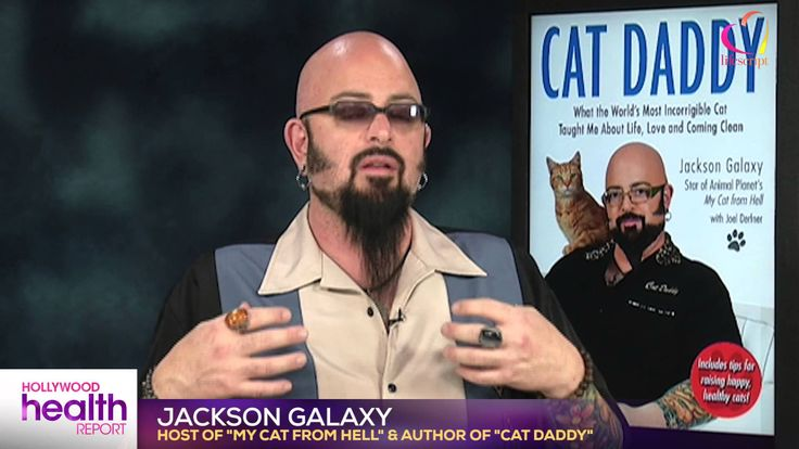 21 best the cat daddy jackson galaxy images on pinterest for Jackson galaxy images