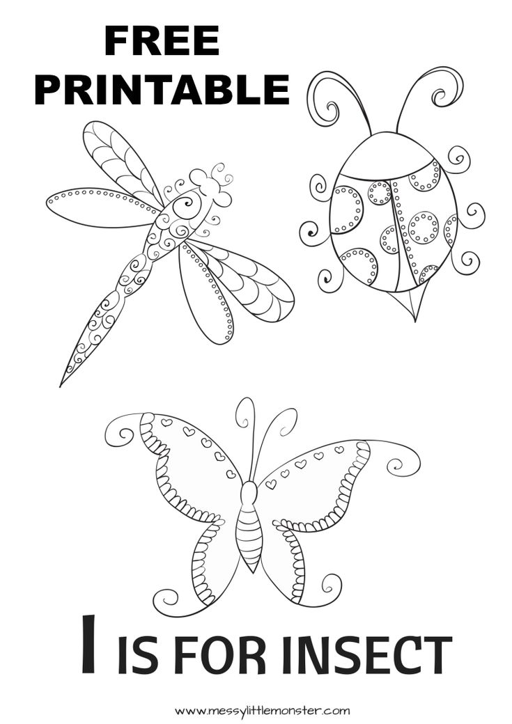 I is for Insect Colouring Page