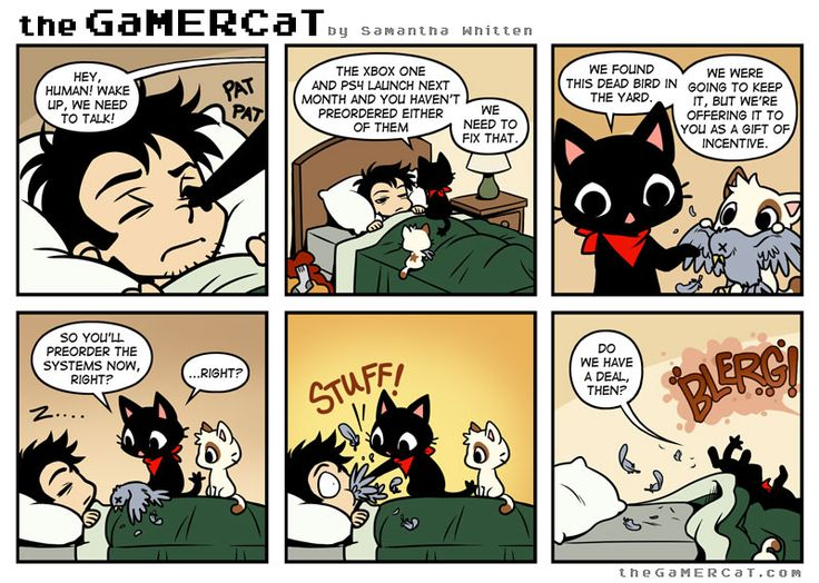 We never properly appreciate the gifts bestowed upon us by our feline companions. Read the next comic on Tapastic!