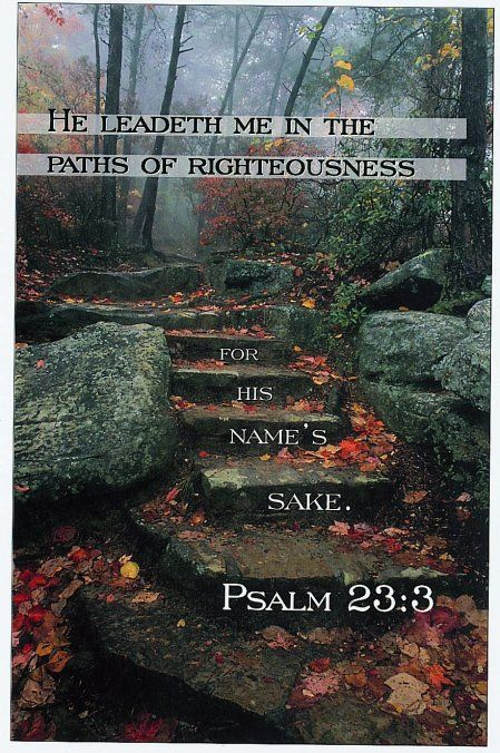 Psalm 23:3 (KJV) He restoreth my soul: he leadeth me in the paths of righteousness for his name's sake.
