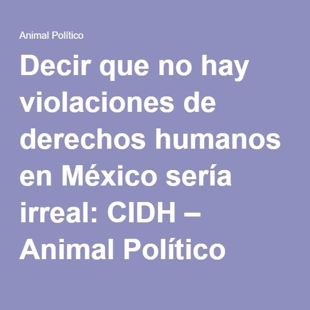 Decir que no hay violaciones de derechos humanos en México sería irreal: CIDH – Animal Político