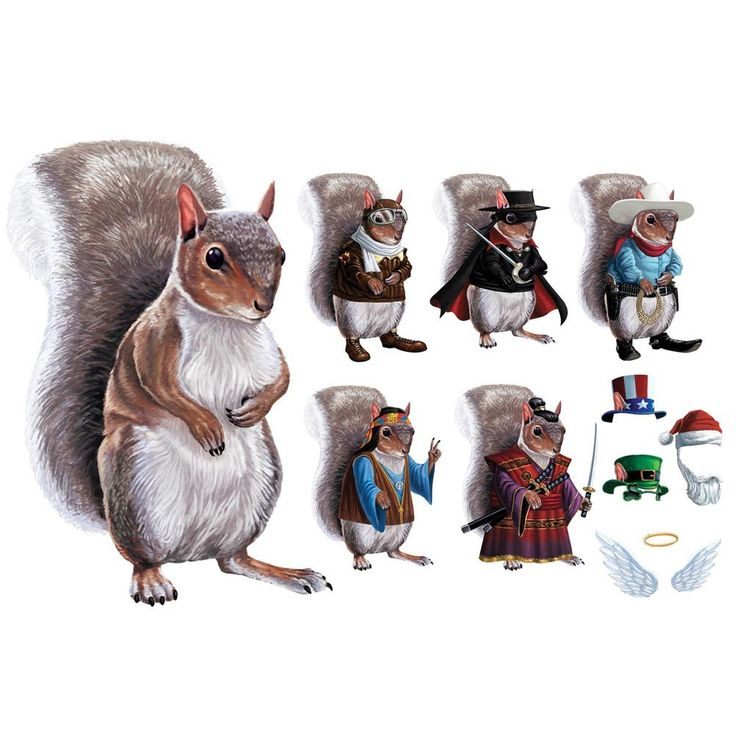Amazon Com Children S Dress Up Squirrel Costume Magnets