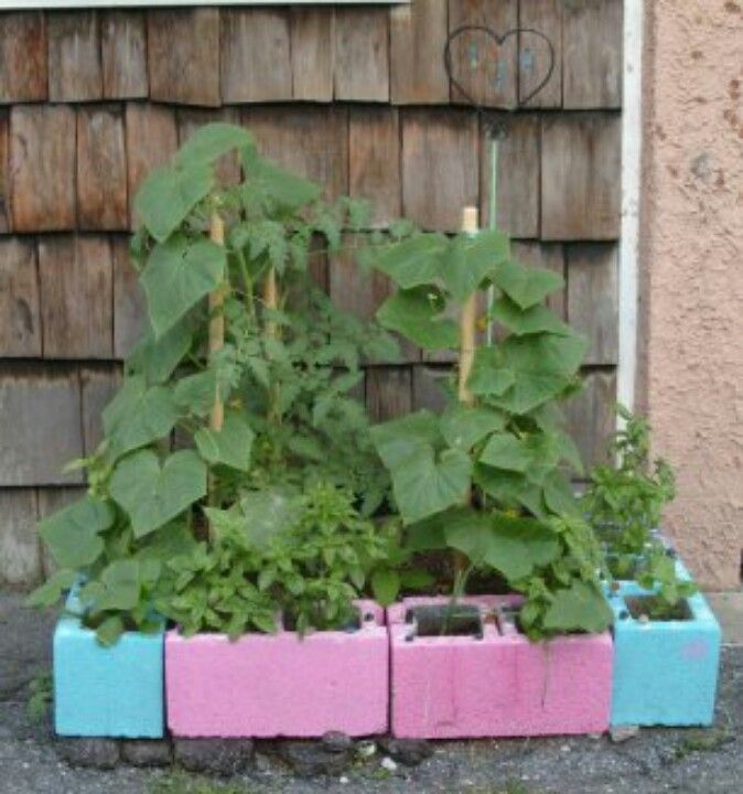 Cinder Block Raised Beds To Replace Our Sad Wooden Ones Next Year And Paint The Bricks Cute