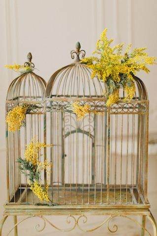 Antique birdcage | Warmphoto Photography | see more on: http://burnettsboards.com/2014/04/vintage-birdcage-bridal-session/ #birdcage