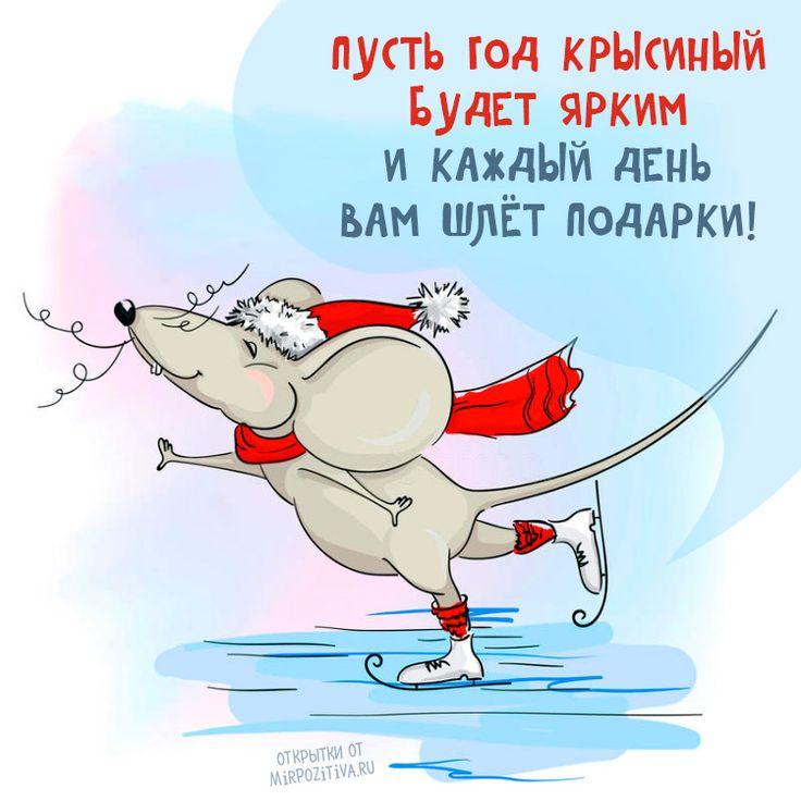 суповой пожелания на новый год прикольные картинки крысы вам требуются