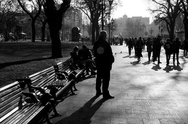 Patience of the Chessmaster / Спокій гросмейстера  Prospekt Svobody, October 2014, Lviv, Ukraine. Sony NEX-5N, Minolta AF 24-105mm F3.5-4.5 D