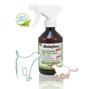 Anti puce, tique pour chat et chien, Mélaflon spray  21e