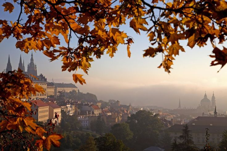 Prague Castle, St Veit Cathedral and golden towers from Petrin Hill