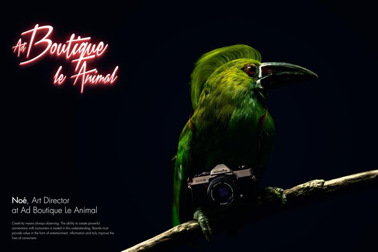 Ad Boutique Le Animal: Noé, Art Director | Ads of the World™