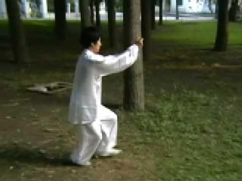 Xing Yi Quan: Rooster Form - YouTube