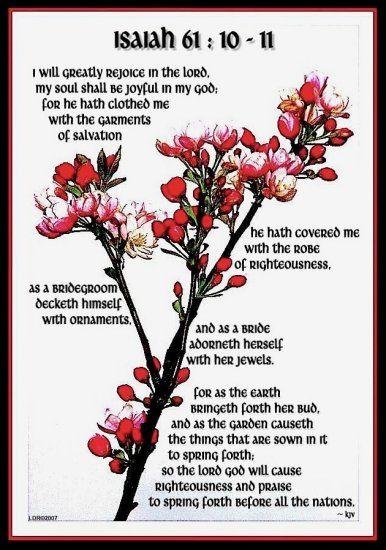 Isaiah 61:10-11 Bible verse scripture apple blossom branch sky flower