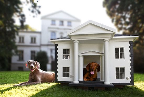 Creative dog house looking like a mansion