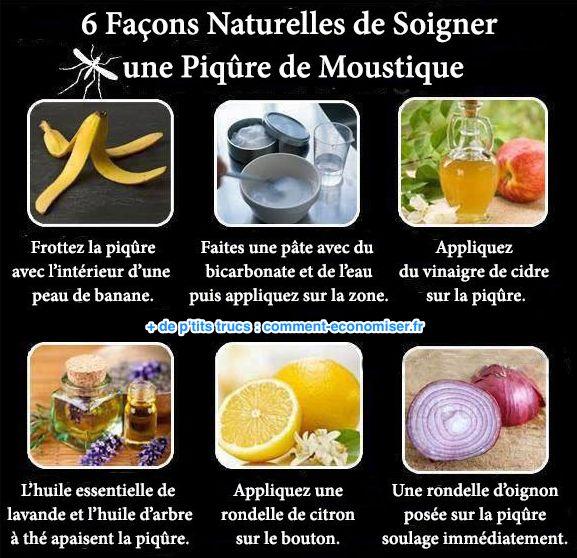 Les 6 Remèdes Naturels Pour Soigner Une Piqûre de Moustique.
