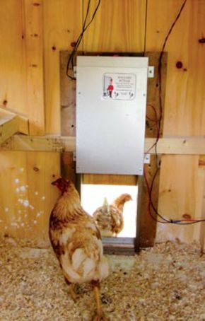 Solar powered chicken coop, light, auto open door, etc. #pioneersettler
