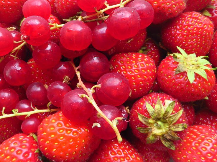 lekker fruit