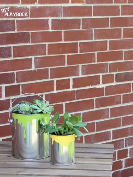 Paint Can Planter for Succulents | DIY Playbook