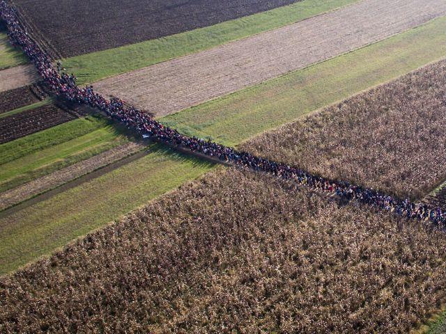 Slovenia invaded! Prime minister warns EU is near death.