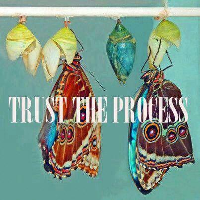 . . .transformation, change management