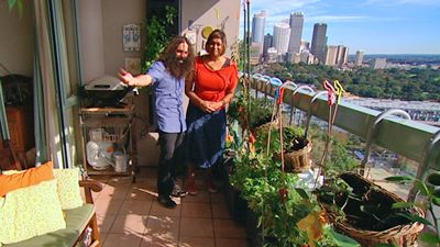 On the 13th floor of an apartment building in Potts Point, downtown Sydney - is the home of committed urban gardener, Indira Naidoo.